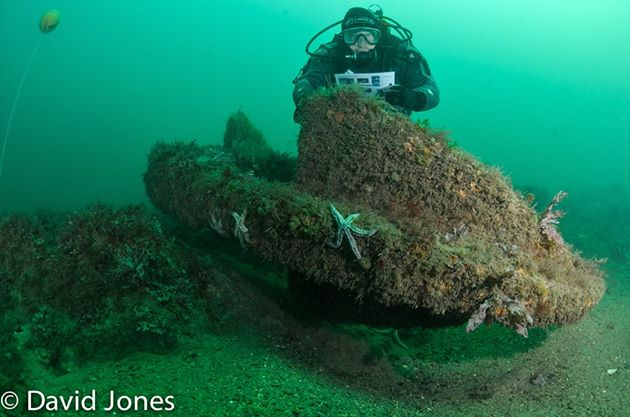 On the wreck of the Coronation