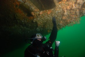 Looking into the underside of a wreck
