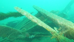 Wreck of the SS Luis